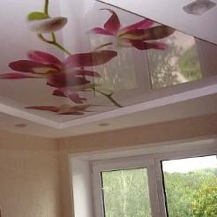 Лаковый потолок с фотопечатью
